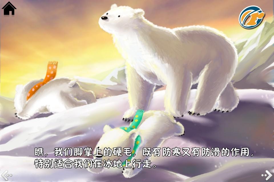 生长在北极的北极熊为什么不怕冷?